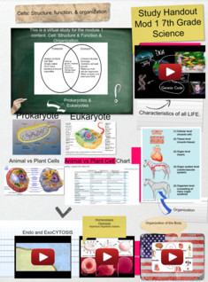 7th grade life science: Mod1 Cells: structure, function, & organization study handout