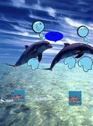 Island of the Blue Dolphins's thumbnail