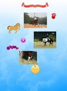 horses and dogs's thumbnail