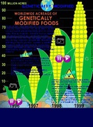 GM Foods's thumbnail