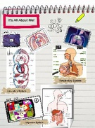 human body systems project's thumbnail