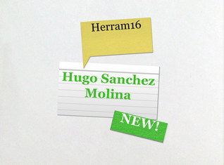 Hugo Sanchez Molina