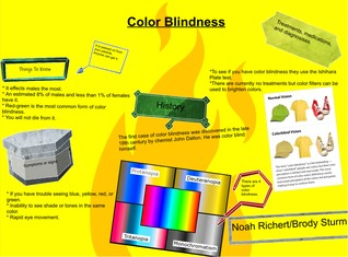 Color Blindness Noah/Brody