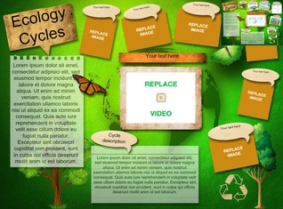 Ecology Cycles