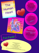 The Human Heart's thumbnail