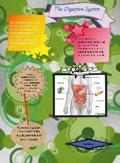 Biojournal: introduction to digestive system