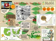[2015] Cadi Creger and Kate Burk (1st Life Science 2015): GMO foods, yes or no's thumbnail