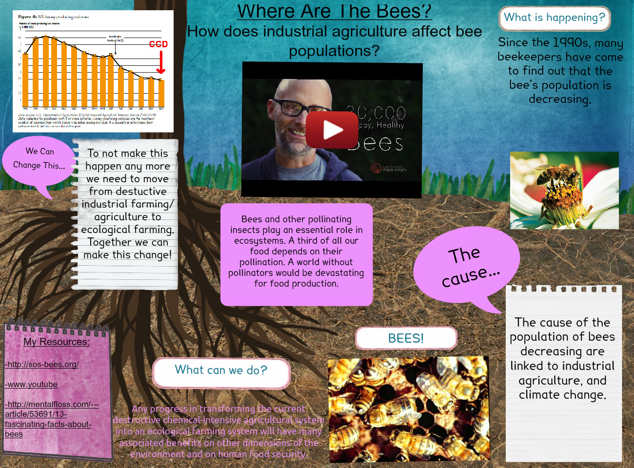 Where are the Bees?: animals, bees, decreasing, en, environmental