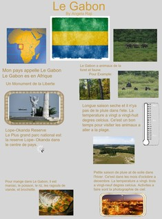 Le Gabon Country Project