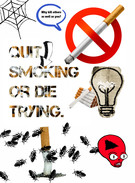 Quit Smoking Or Die Trying's thumbnail