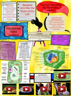 Plant Cell Information