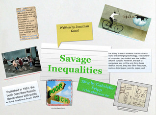 Savage Inequalities-Gabrielle Fripp