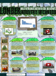 LUMBER INDUSTRY IN CANADA - SILVIA BE