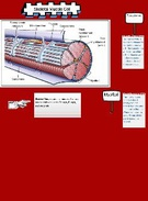 skeletal muscle cell's thumbnail