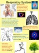 Respiratory System thumbnail