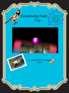 Community Field Trip 12-13's thumbnail